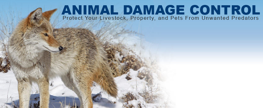 Southereastern Outdoor Supplies - Animal Damage Control Products